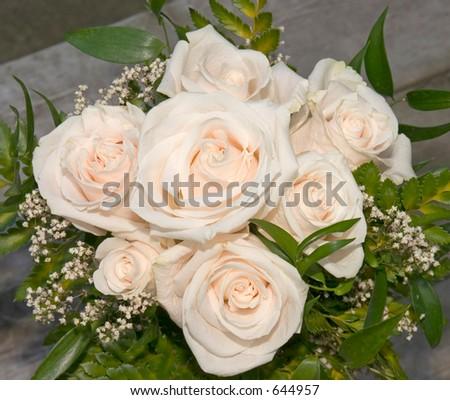 Rosas blancas. - stock photo