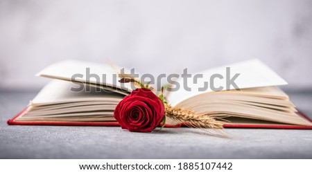 Rose and Book, traditional gift for Sant Jordi, the Saint Georges Day. It is Catalunya's version of Valentine's day Photo stock ©