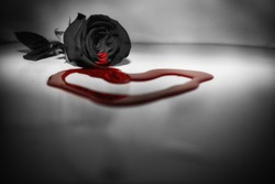 Rose bleeding to a red heart