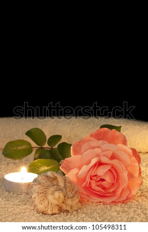 rose candles and shell in night spa abstract