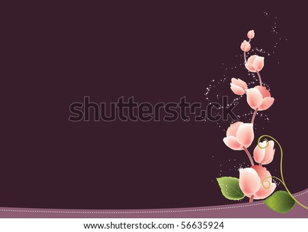 wallpaper pink and black_08. Rose Flower Background Stock