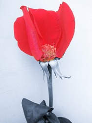 Rose flower with the middle open from the petals. Black and white image with red petals