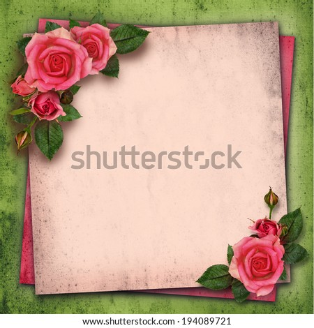 Rose flowers in a corner of vintage background