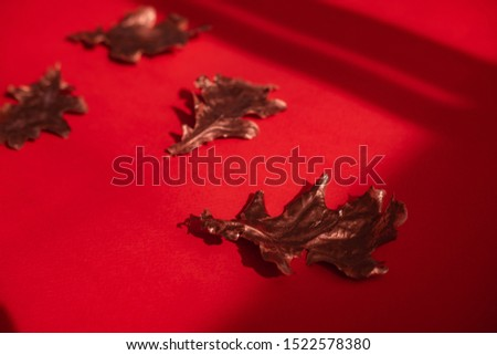 Rose gold dried fall leaves on red background from above. Direct sun light, focus on the shadows. Autumnal minimalism flatlay. Copyspace for text