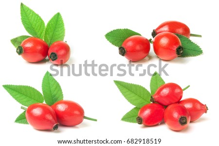 rose hip berry with leaf isolated on white background. Set or collection