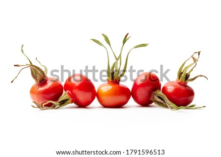 Rose hips from Rosa Rugosa on white background Stock photo ©
