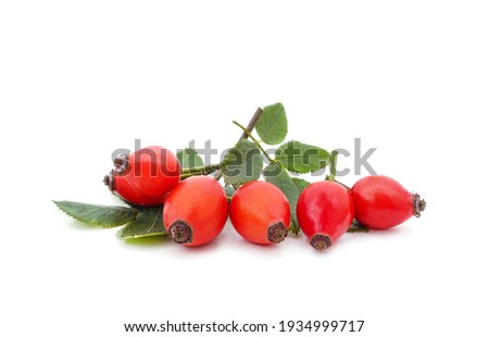 Rose hips with leaves isolated on a white background. Stock photo ©