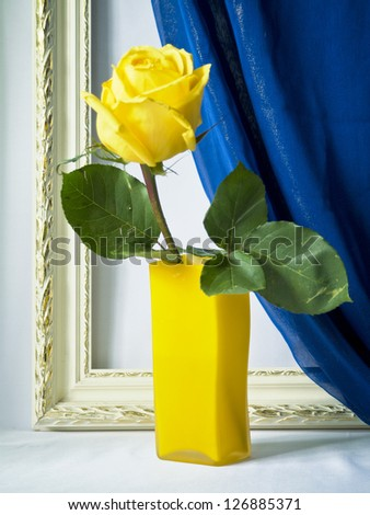 Rose in a glass vase a background of curtains and frames
