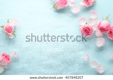 rose in water spa background.