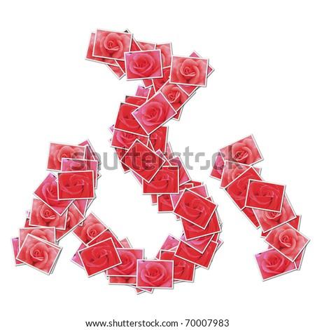Rose Japanese hiragana