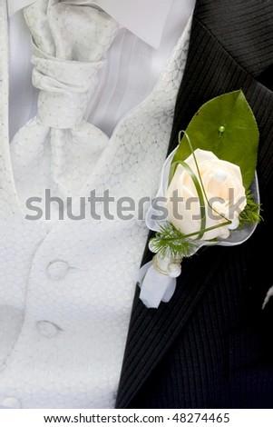 rose on black Suit