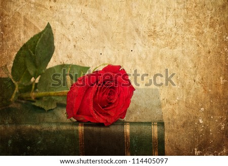Rose on book in vintage style
