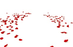 Rose petals are scattered on the floor. There is free space for your design. Isolated white background