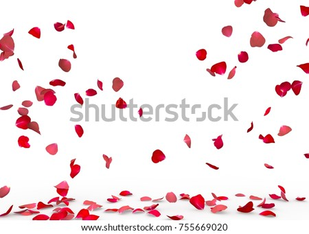 Rose petals fall to the floor. Isolated background #755669020