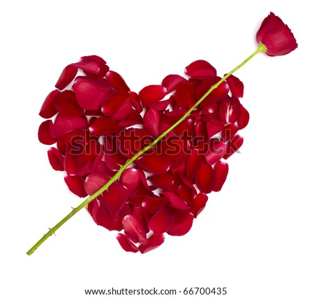 rose petals forming heart shape on white background