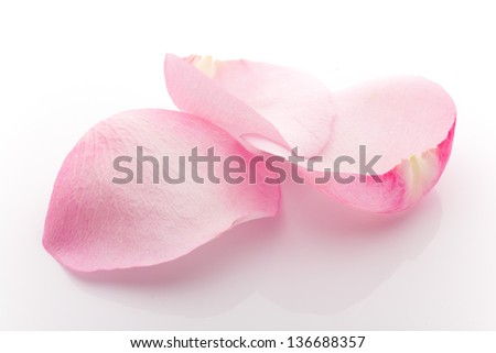 Rose petals isolated on the white background. #136688357