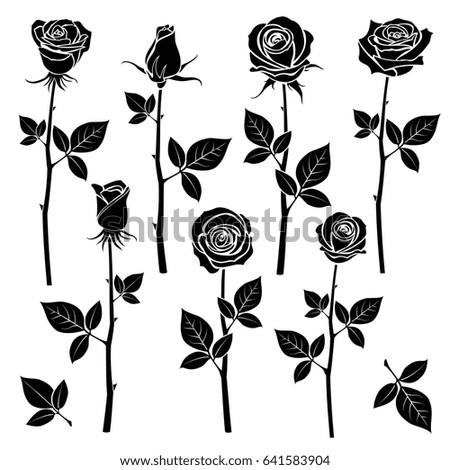 Rose Silhouettes Spring Buds Symbols Black Rose With Leaf Nature