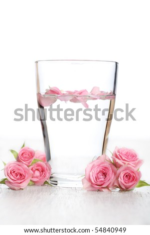 Rose water and rose petals