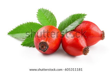 Rosehip isolated on a white background. Fresh raw briar berries with leaves. Stock photo ©