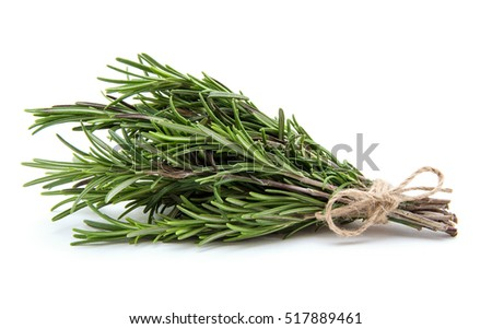 Rosemary bound on a white background #517889461
