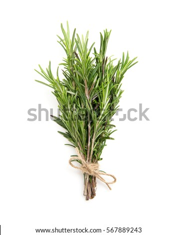Rosemary bound on a white background #567889243