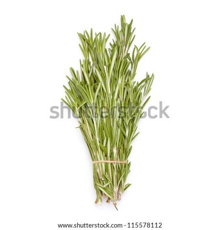 Rosemary bunch