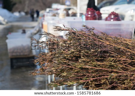 Rosemary bunch herb lay on the market stall at winter day in siberia, Russia. Local fair. Copy space.