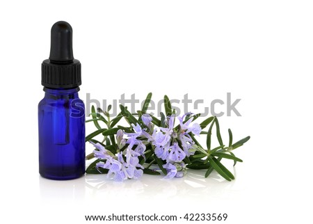Rosemary herb leaf sprig with flowers and an aromatherapy essential oil glass bottle, over white background.