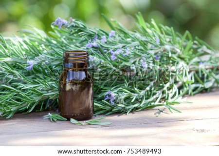 Rosemary oil and rosemary plant. Healing herbs. #753489493