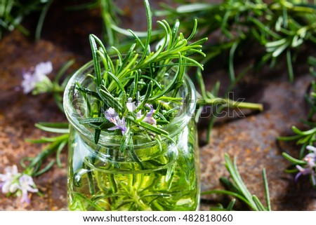 Rosemary oil. Rosemary essential oil jar glass bottle and branches of plant rosemary with flowers on rustic background. #482818060