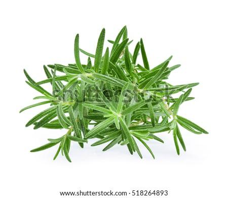 Rosemary, Pile of rosemary leaf  isolated on white background #518264893