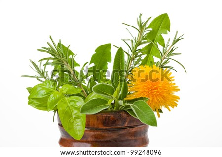 Rosemary, sage, basil and dandelion in a mortar - stock photo