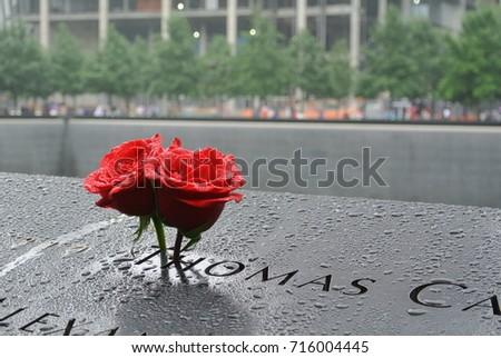 Roses at the 9/11 Memorial #716004445