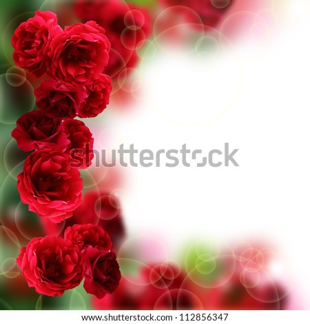 Roses Flowers design. With copy-space
