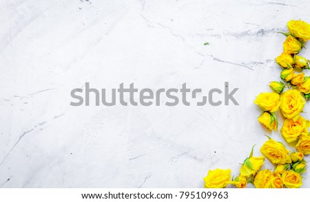 roses frame for spring design on marble background top view mock