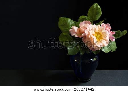 roses in a small blue glass vase, \ bouquet of cut blossoming springtime roses with mild warm colors, in a small blue glass vase shot in front of  a black backdrop