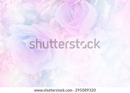 Roses in sweet soft color and blur style made with color filter, for background #295089320