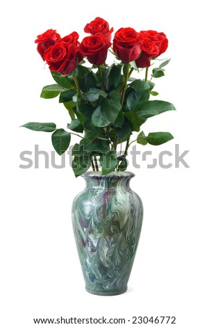 Roses in vase isolated on white background