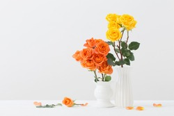 roses in white vase on white background