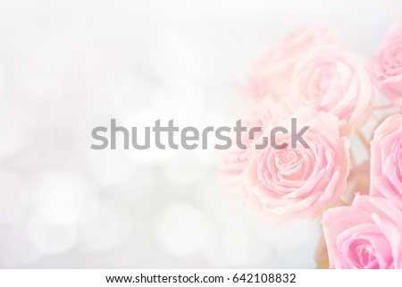 Roses on a blue background