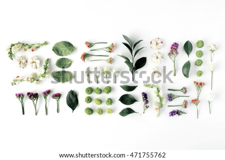 roses, pink flower buds, branches and leaves isolated on white background. flat lay, top view #471755762