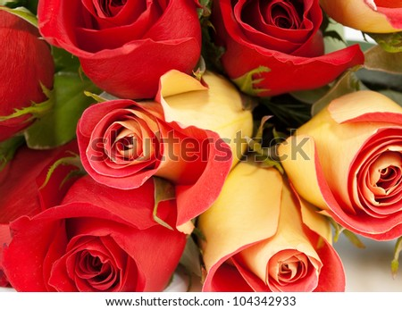 Roses red  bouquet isolated on white background