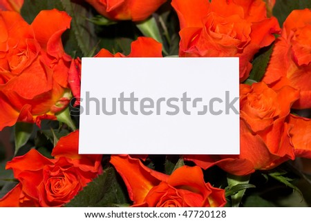 roses with blank card