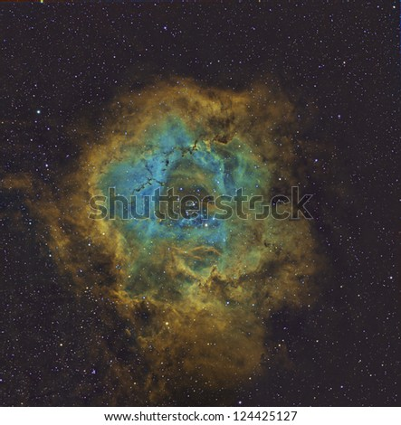 Rosette Nebula in Hubble Palette