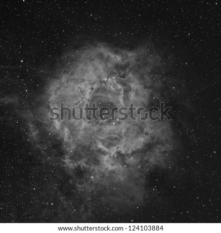 Rosette Nebula in Narrow Band Color