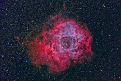 Rosette Nebula NGC2244 with a telescope and a scientific camera