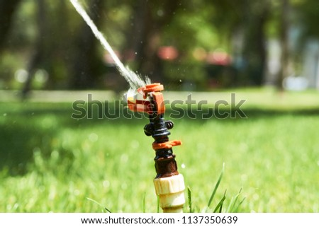 Rotating sprinkler spraying a water into the backyard, close-up #1137350639
