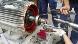 Rotor shaft and bearing for electric motor , Overhaul electric motor and change new bearing for electric motor onsite service
