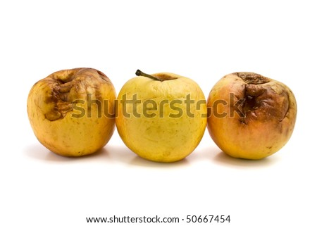 rotten apples isolated on white background