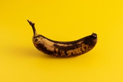 Rotten banana on yellow background. Excessive consumption concept.